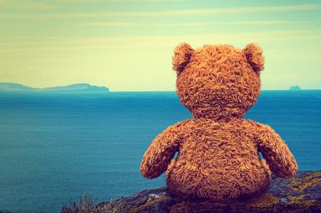 Lonely Teddy Stock Photo