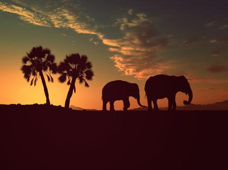 アフリカ 写真素材