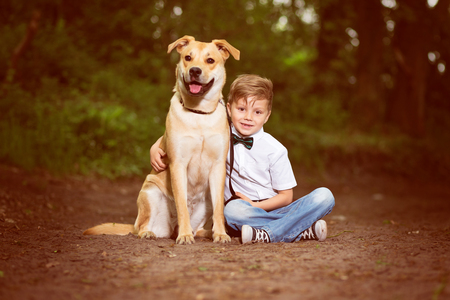 Child and his Dog Stock Photo
