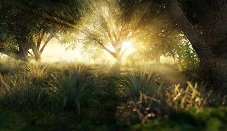 Lichtung in der Morgensonne (3D Rendering)