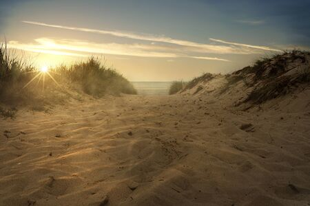 Path through the dunes to the sea