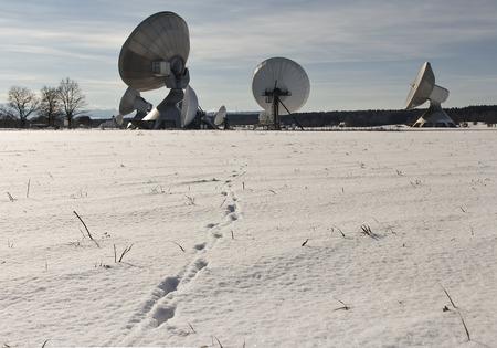 satelite: Ears to heaven