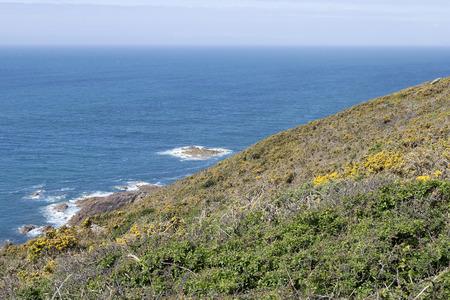 the hillside into the ocean