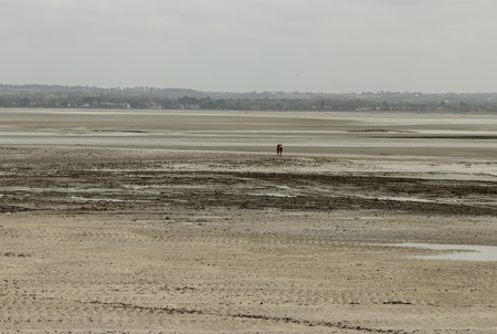 st michel: Walking on the muddy fields to Mont St Michel requires a guide