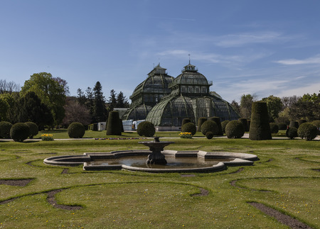 nbrunn: The palm house in Schnbrunn. A pond and and a fountain in the foreground