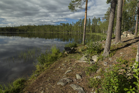 sweden resting: Part of a lake in a forest area with some reflections