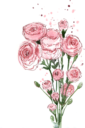 Watercolor painting bouquets Flower carnation pink on a white background.Space to put text