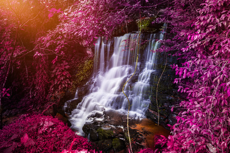 Natural background waterfall. waterfall Colorful leaves Stock Photo - 75143353