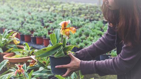温室の花苗。植木鉢を持っている若い女性の手。