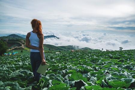 여자는 정원 순 무를 읽고 의미합니다. 아침의 분위기 산은 안개가 자욱하다. phetchabun phutubberg 태국