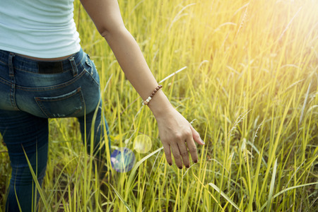 Asian women. On a meadow nice atmosphere during the summer. Stock Photo