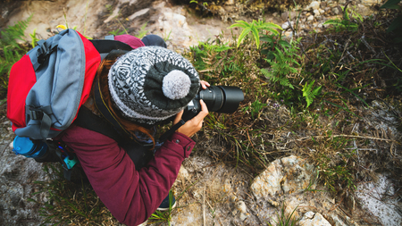 Photographer asian woman photograph the nature in forest.