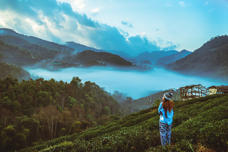woman asian travel nature. Travel relax. Natural park on the Moutain. Thailand