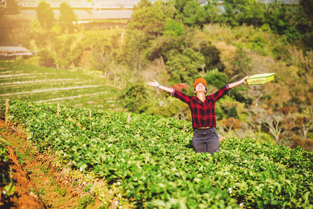 woman asian travel nature. Travel relax. Keep strawberry in the farm. On the Moutain.  At summer.
