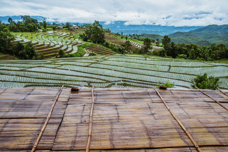 Landscape field on mountain. During the rainy season. The village in the countryside.
