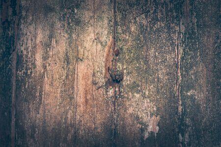 Natural background.Texture background old dark brown wood. Texture wood