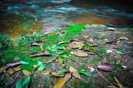 Wallpaper nature Waterfall stream. thailand doi-inthanon Imagens