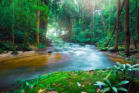 Wallpaper nature Waterfall stream. thailand doi-inthanon thailand tropical Imagens