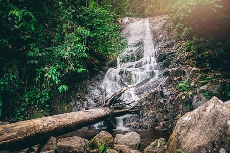 background Wallpaper nature Forest Hill Waterfall. thailand doi inthanon