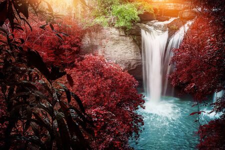 Natural background waterfall. waterfall Colorful leaves. thailand tropical 스톡 콘텐츠