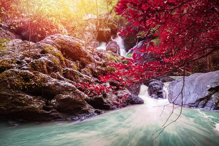 Natural background waterfall. waterfall Colorful leaves. thailand tropical 免版税图像