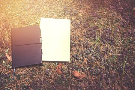 Book with a notebook placed on the grass. Stock Photo