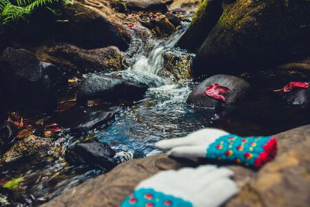 Natural background. Maple leaves on the rocks at the waterfall. Winter gloves placed on the stone. Stock Photo
