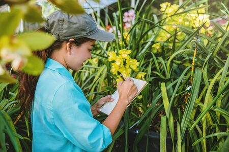 Young women write note among orchid garden. Colorful orchids, Orchid flower bloom.