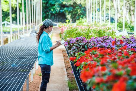 The girl are studying and Save the change of trees, flowers Beautiful (garden flower) background in nature farmers