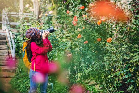 Photographer travel photograph in the rose garden. Travel relax. Multicolored roses beautiful, background blur.