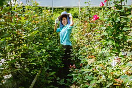 Asian women farmers who are holding a rose and smiling. Workers working in the rose garden.