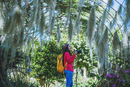 Women travel photograph Nature flower in the public park. take pictures spanish moss tree arch suitable as background. Stock Photo