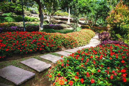 The beautiful nature of the flower park, public park suitable as background.