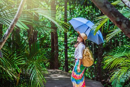 Asian women travel relax travel nature in the holiday. Nature Study in the forest. Girl happy walking smiling and enjoying travel through the mangrove forest. tha pom-klong-song-nam at krabi. summer