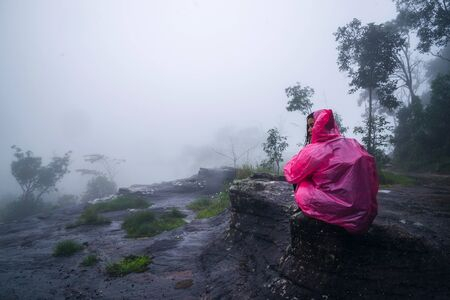 tourist with pink rain coat Sitting View the scenery natural beautiful touch fog at Phu Hin Rong Kla National Park. travel nature, Travel relax, Travel Thailand, rainy season.