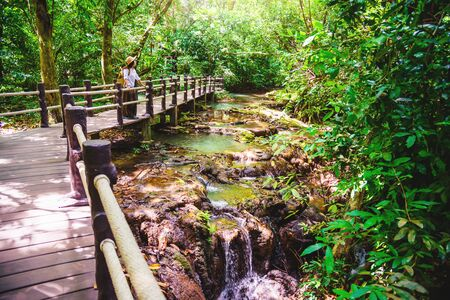 Girls are happy to travel to the mangrove forest. She is walking on a wooden bridge. Nature trail, Thanbok waterfall, recreation, travel, backpacks, nature, tourism, countryside, style, forest, adventure.