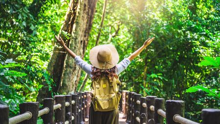 The girl is happy to travel to the mangrove forest. She is walking on the bridge and raising her hand. Nature trail, Than Bok Thorni Waterfall. Relax, Travel, Backpack, Nature, Tourism, Rural, Style. Stock fotó