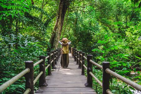 The Girl walking in the bridge and enjoying the tourism in through the mangrove forest. Waterfall Than Bok Khorani Nature Trail. Krabi, relax, travel, backpack, nature, Tourism, countryside.