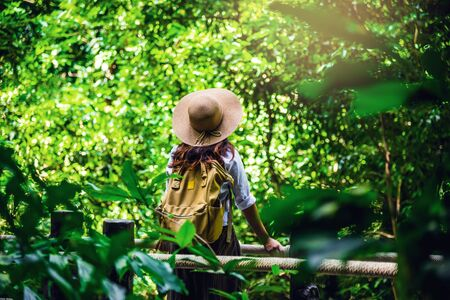 women travel relax nature in the holiday. Nature Study in the forest. The Girl happy walking and enjoying Tourism in through the mangrove forest. Waterfall Than Bok Khorani Nature Trail. travel, backp