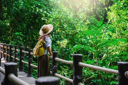 The Girl walking in the bridge and enjoying the tourism in through the mangrove forest. Waterfall Than Bok Khorani Nature Trail. Krabi, relax, travel, backpack, nature, Tourism, countryside. Stock fotó