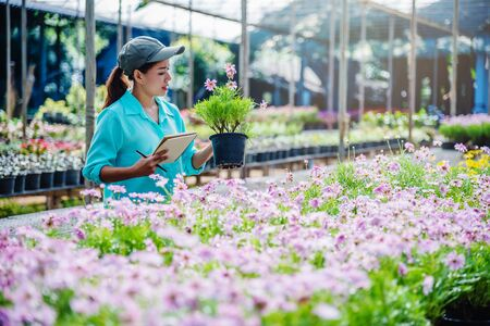 Young women working at the flower garden are studying and writing records of the changes of flower trees. Flower garden background