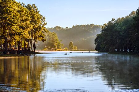 Travel nature on the mountains pine forests, with fog floating on the lake surface morning the sunrise in Thailand. 版權商用圖片 - 127640900