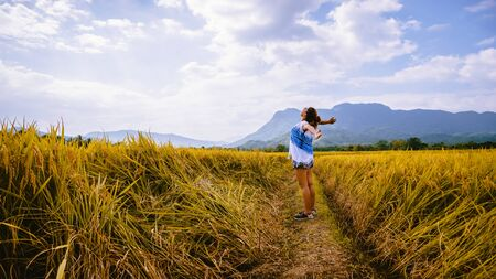 Asian women travel Rice fields Golden yellow On the mountains in the holiday. happy and enjoying a beautiful nature. travelling in countrysde, Green rice fields, Travel Thailand.