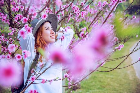 woman traveler with backpack holding hat Travel to see the pink cherry blossoms and enjoying a beautiful nature. wanderlust travel concept. 免版税图像