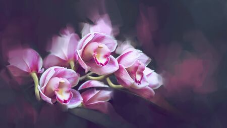 background Cymbidium orchids. Digital drawing orchids oil paint. Full frame, Space for text. background flower. Cymbidium