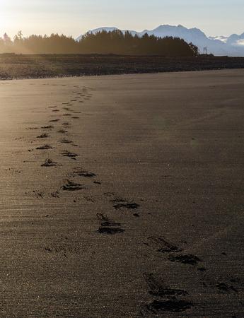 フット プリントのみがビーチ間の人の通過をマークします。