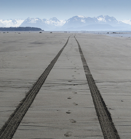 ATV tire tracks stretch into the distance on a lonely beach