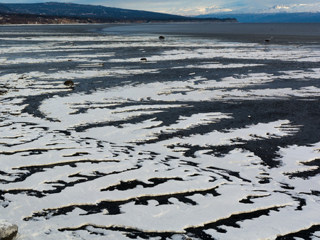 As the tide retreated, ice formed in serpentine paths across the beach.