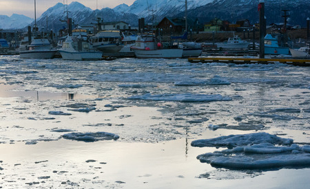 floats: Ice floats in a small boat harbor in predawn light.