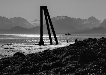 sihouette: A lonly three legged piling stands ready for shipping when the tide turns (black and white)